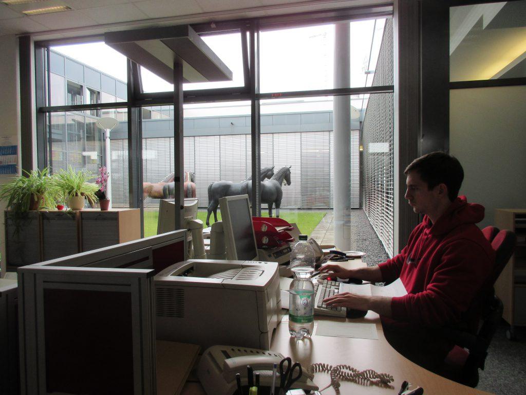 Witzige Skulpturen im Innenhof der Kölner Zulassungsstelle: HorsePower